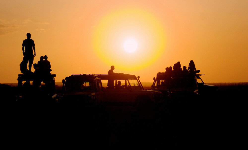 Sundowner in the Masai Mara, Kenya