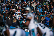 January 17, 2016: Carolina Panthers vs Seattle Seahawks. Panthers fans cheering in the stands