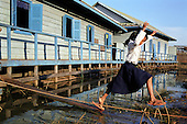 Écoles flottantes - CAMBODGE - Floating schools ⬇