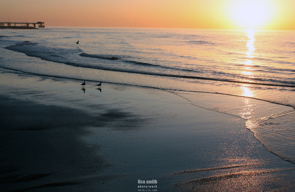 Galveston Texas beach at sunrise
