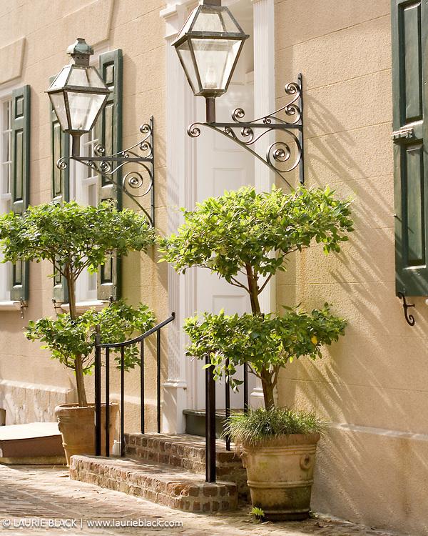 Inviting sunny photo of beautiful streetside entry.