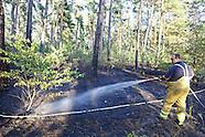 Waldbrand Käfertaler Wald