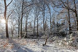Gooilust, 's-Graveland, Wijdemeren, Noord Holland