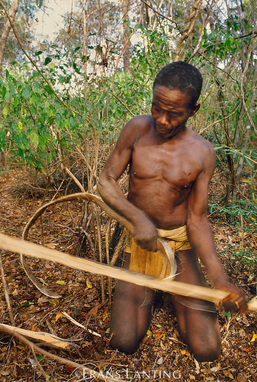 Mikea man making rope from baobab tree bark, Wetsern Madagascar