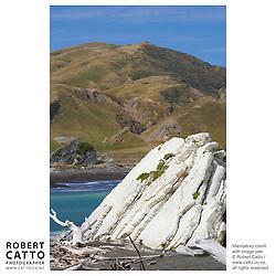 The east coast of New Zealand's North Island, east of Masterton in the Wairarapa region.