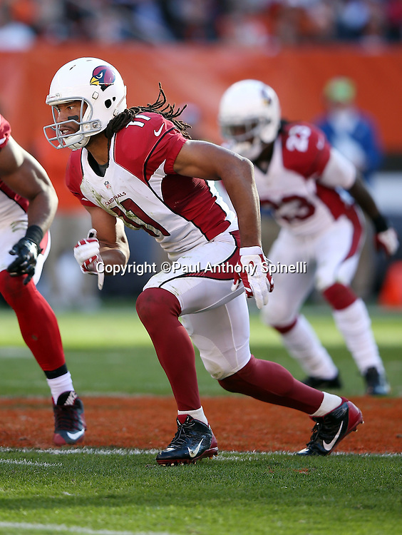Arizona Cardinals wide receiver Larry Fitzgerald (11) goes out for a pass during the 2015 week 8 regular season NFL football game against the Cleveland Browns on Sunday, Nov. 1, 2015 in Cleveland. The Cardinals won the game 34-20. (©Paul Anthony Spinelli)
