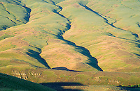 Spring morning view of ridged high desert hillside above Rosa Creek Eastern Washington USA