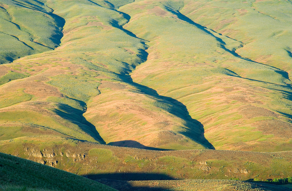 Spring morning view of ridged high desert hillside above Rosa Creek Eastern Washington USA