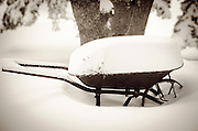 Wheelbarrow filled with snow, Green Valley Lake, California USA