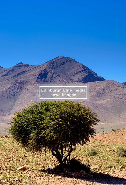 Foothills of the Atlas mountains south of Marrakech, Morocco.<br /> <br /> (c) Andrew Wilson | Edinburgh Elite media