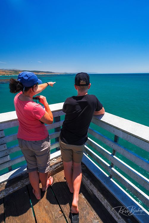Whale watching from the San Simeon Pier, Hearst San Simeon State Park, California USA