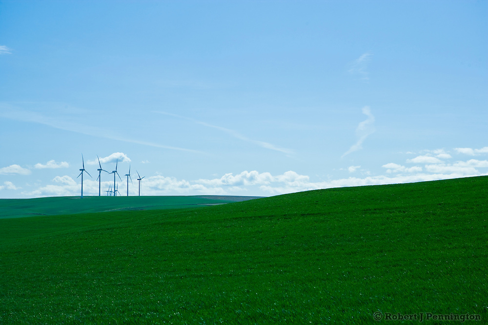 Wind Turbines in southeast Washington, surrounded by agricultural fields of green.