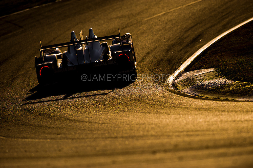 Prototype at sunset, Petit Le Mans. Oct 18-20, 2012. © Jamey Price