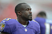 Baltimore Ravens wide receiver Deonte Thompson (83) with his helmet off during a preseason NFL game at Raymond James Stadium on Aug. 8, 2013 in Tampa, Florida. <br /> <br /> ©2013 Scott A. Miller