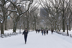 Central Park in the Wintertime