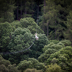 Martin Milner and Colette Gregory wedding at Go Ape Aberfoyle.