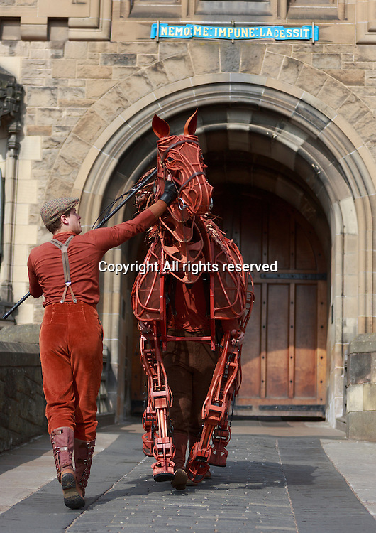 Joey, The Iconic Equine star of the National Theatre's production of War Horse makes early morning visit to Edinburgh Castle and will show at The Edinburgh Theatre in January and February 2014<br /> <br /> Photo by Pako Mera