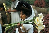 Tropical cultures: Latin America: Mexico, Guatemala; Bolivia, Peru, Chile, Venezuela