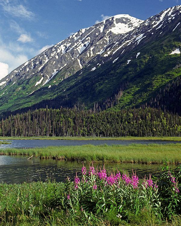 Tern Lake along Seward Highway on Kenai Peninsula in Southcentral Alaska