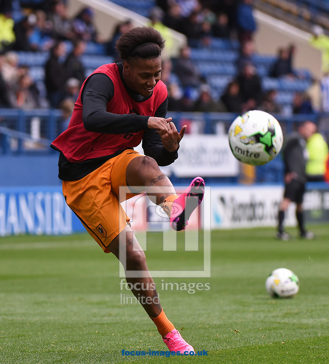 Abel Hernandez of Hull City warms up during the Sky Bet Championship match at Hillsborough, Sheffield<br /> Picture by Richard Land/Focus Images Ltd +44 7713 507003<br /> 17/10/2015