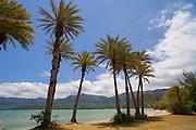 Kualoa Park, Kaneohe, Oahu, Hawaii