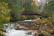 Fall colours along the Little Qualicum River just above the Upper Falls and the Middle Falls Bridge in Little Qualicum Falls Provincial Park on Vancouver Island, British Columbia, Canada
