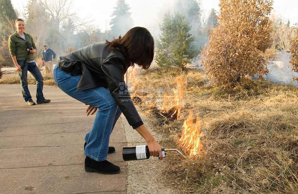 Denver Botanic Gardens, 2008 Controlled burn of native grasses. Anna's Overlook, Sacred  Earth and Plains Gardens.