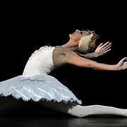 01.02.2018 Sadlers Wells SAMPLED at Sadlers Wells Theatre London UK The Dying Swan performed by Zenaida Yanowsky