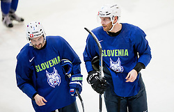 Klemen Pretnar and Andrej Tavzelj during practice session of Slovenian Ice Hockey National Team at training camp, on February 8th, 2016 in Ledna dvorana, Bled, Slovenia. Photo by Vid Ponikvar / Sportida