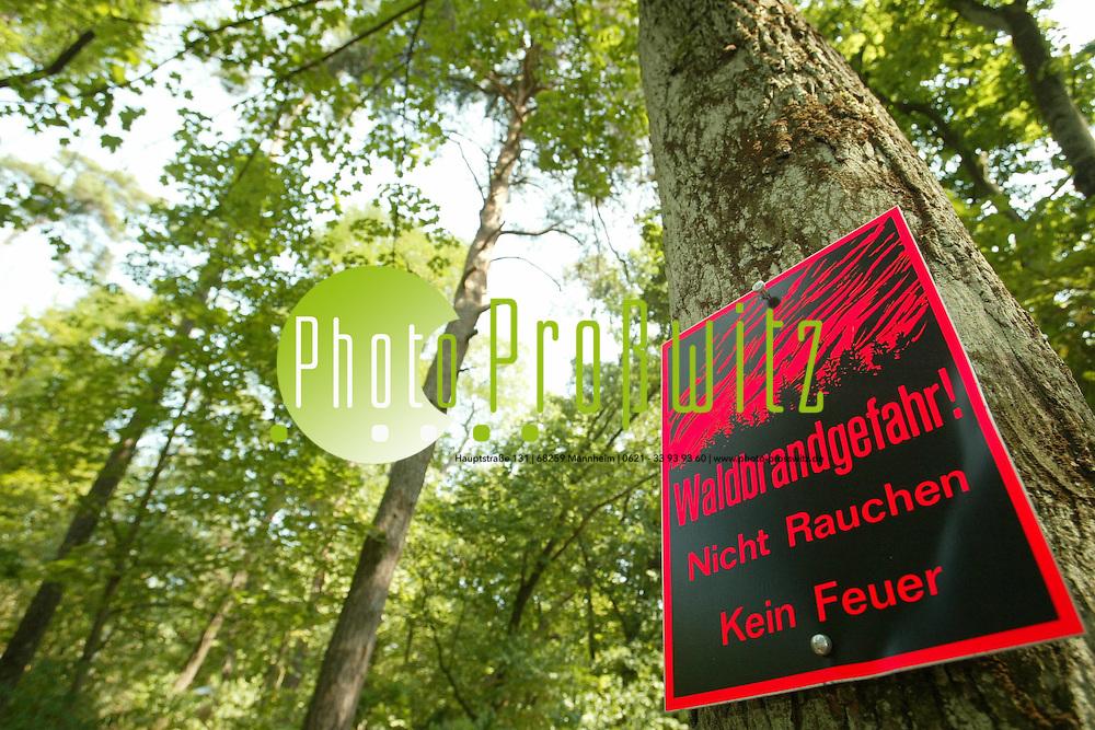 Mannheim. K&auml;fertaler Wald. Waldbrandgefahr Stufe 4<br /> <br /> Bild: Markus Pro&szlig;witz