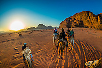 Tourists riding camels at sunrise, Arabian Desert, Wadi Rum, Jordan.
