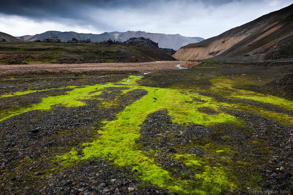 Highlands of Iceland, Fjallabak area. Small stream and extreamly green moss. Laugahraun lava and Suðurnámur mountains in background. Að fjallabaki. Dýjamosi og lækur við rætur Bláhnúks. Laugahraun og Suðurnámur í baksýn.