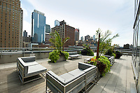Patio at 247 West 46th St