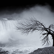 &quot;As Winter Leaves Niagara Mono&quot;<br /> <br /> Gorgeous and moody! Beautiful Niagara Falls as winter is leaving, but before there are buds on the trees. A lone tree bows towards the falls!