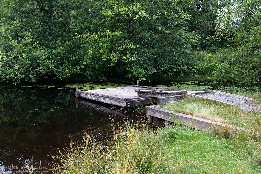 The small dock on McLean Pond at Campbell Valley Regional Park in Langley, British Columbia, Canada.