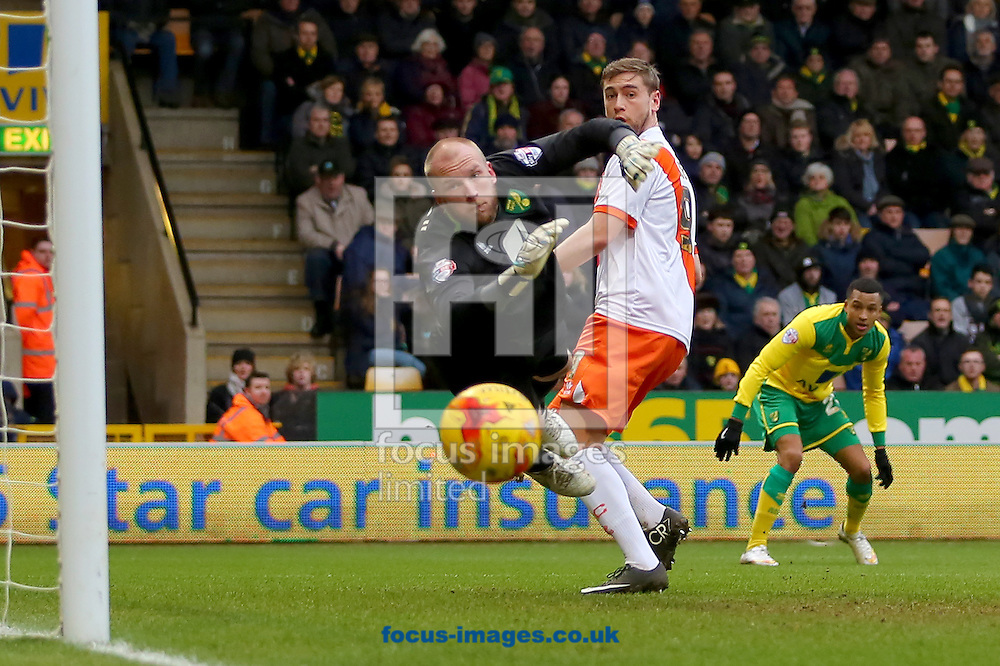 John Ruddy of Norwich City is beaten but Steven Davies of Blackpool misses with a headed effort on goal during the Sky Bet Championship match at Carrow Road, Norwich<br /> Picture by Richard Calver/Focus Images Ltd +447792 981244<br /> 07/02/2015