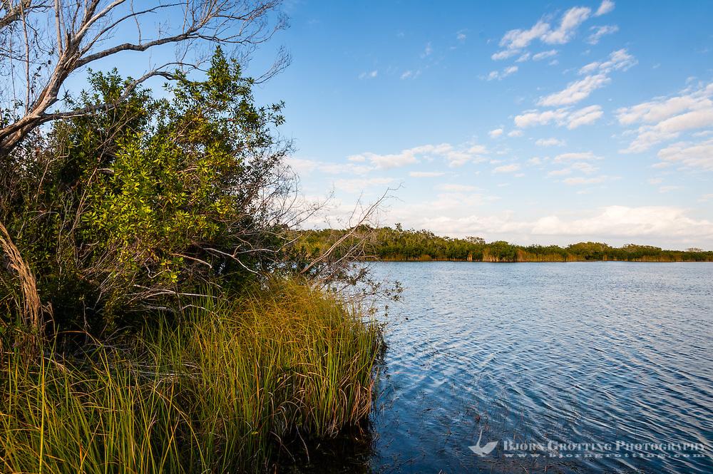 US, Florida, Everglades. Ninemile Pond.
