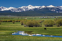Ranch lands in the Bighole Valley Montana, Beaverhead Mountains are in the distance