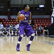 NCAA Men's Basketball: Northeastern vs. James Madison 1/29/2014