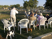 senior people gathering in a dog run USA