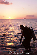 scuba diver enters the water at sunset for a night dive from shore, Cozumel, Quintana Roo, Mexico ( Caribbean Sea )
