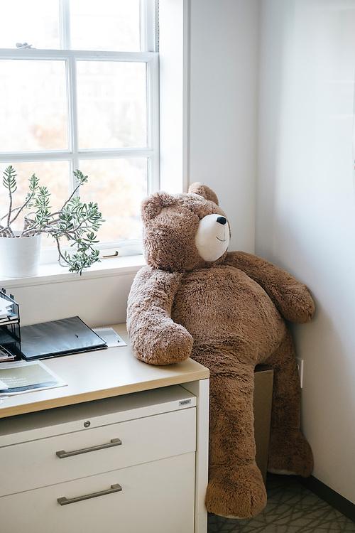 Office details. Stuffed bear named Shubert in the office of Peter Sparding, Transatlantic Fellow.