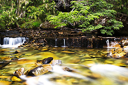 Small cascades of water rushing through a rocky creek in the Lake District, Nahuel Huapi National Park, Argentina,South America