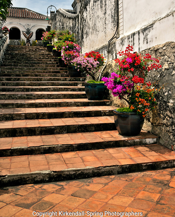 TH00354-00...THAILAND - Pot of azaleas along the stairs on Pra Nakon Khiri, ( Holy City Mountain),  in Phetchaburi.