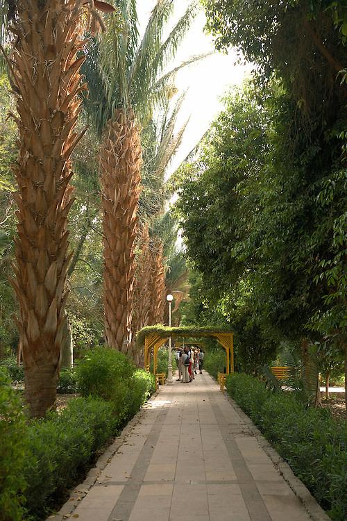 Gardens of Kitchener's Island, Aswan, Egypt