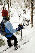A woman looks at a stream and snow covered trees while backcountry skiing near Ishpeming Michigan.<br />