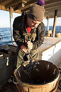 Chris Shipley places a crab in the basket after measuring it. If the crab is too small, they will throw it back into the bay. | October 11, 2015