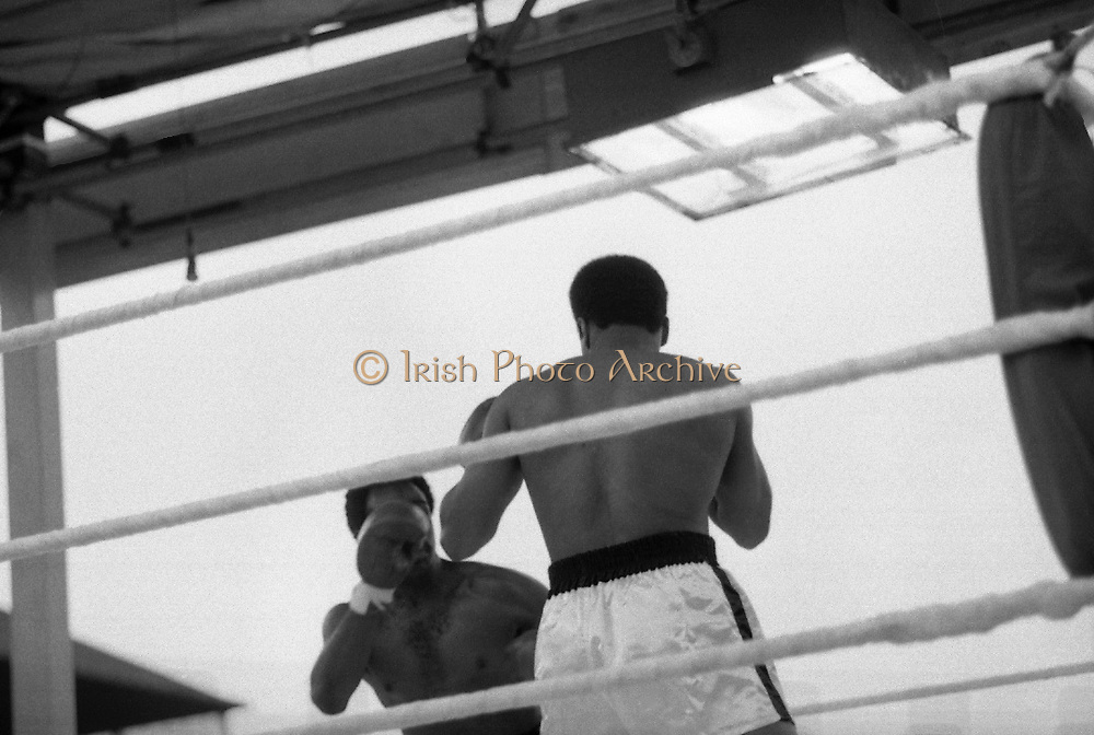Ali vs Lewis Fight, Croke Park,Dublin.<br /> 1972.<br /> 19.07.1972.<br /> 07.19.1972.<br /> 19th July 1972.<br /> As part of his built up for a World Championship attempt against the current champion, 'Smokin' Joe Frazier,Muhammad Ali fought Al 'Blue' Lewis at Croke Park,Dublin,Ireland. Muhammad Ali won the fight with a TKO when the fight was stopped in the eleventh round.<br /> .<br /> Photo as Lewis and Ali look for an opening to attack.