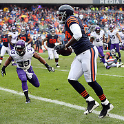 2013 Vikings at Bears