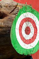 The axe-throwing target at Timber Tina's lumberjack show, Blue Hill Fair, Maine
